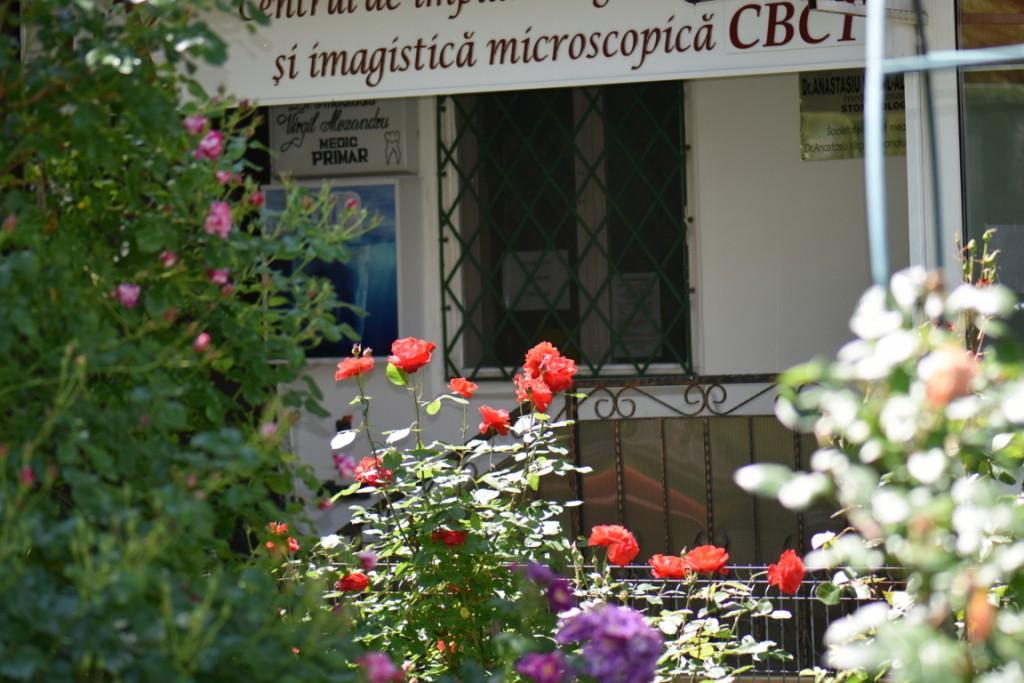 Trandafiri si musafiri (106) (FILEminimizer)