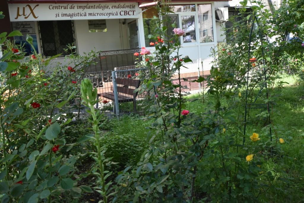 Trandafiri si musafiri (3) (FILEminimizer)